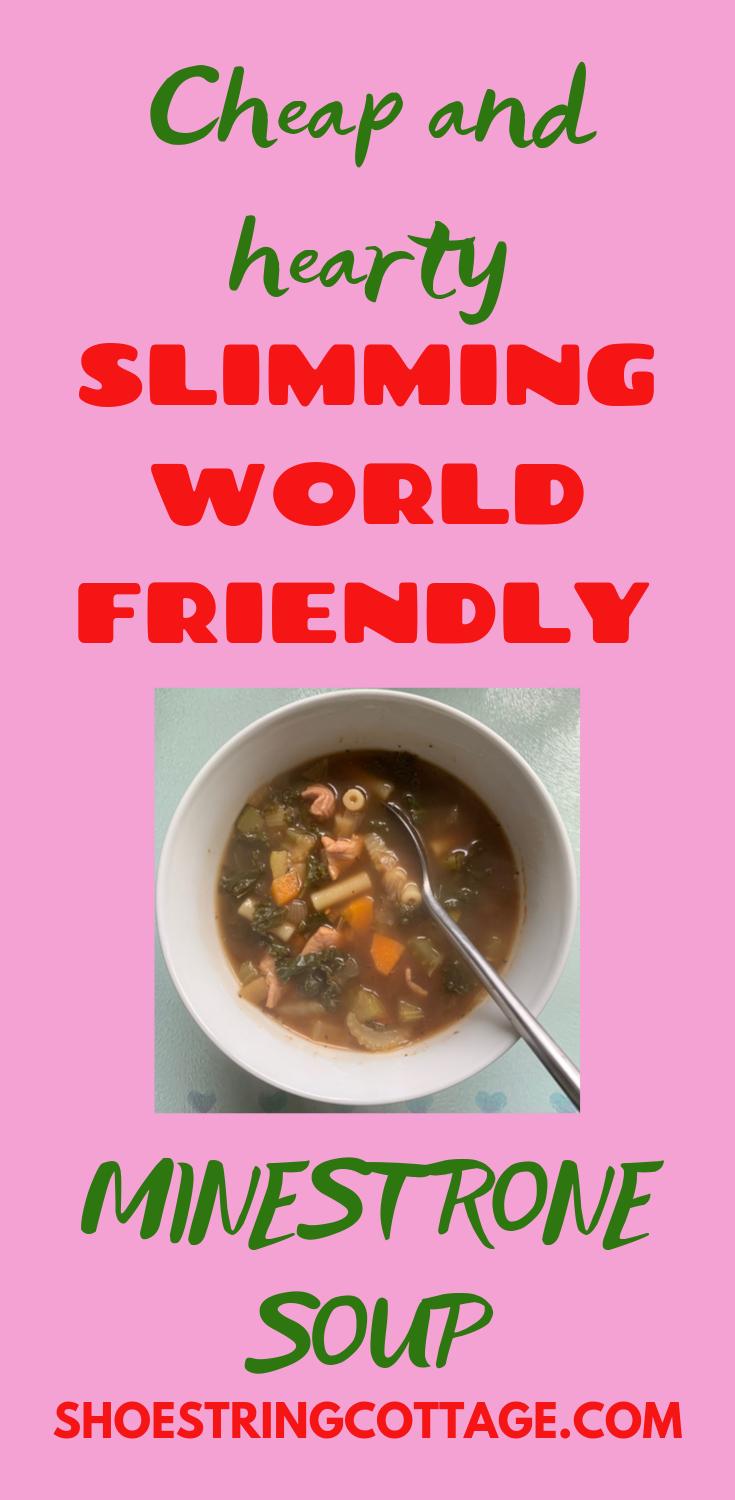 Slimming World minestrone