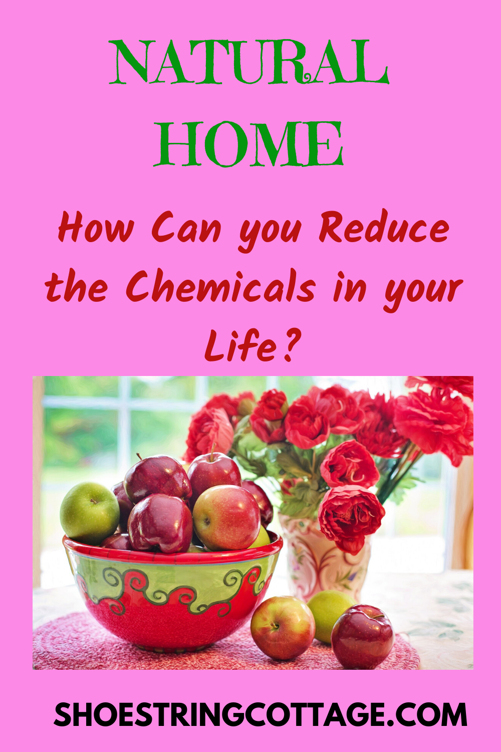 REDUCE THE CHEMICALS IN YOUR HOME
